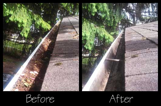 Gutter Cleaning Before and After
